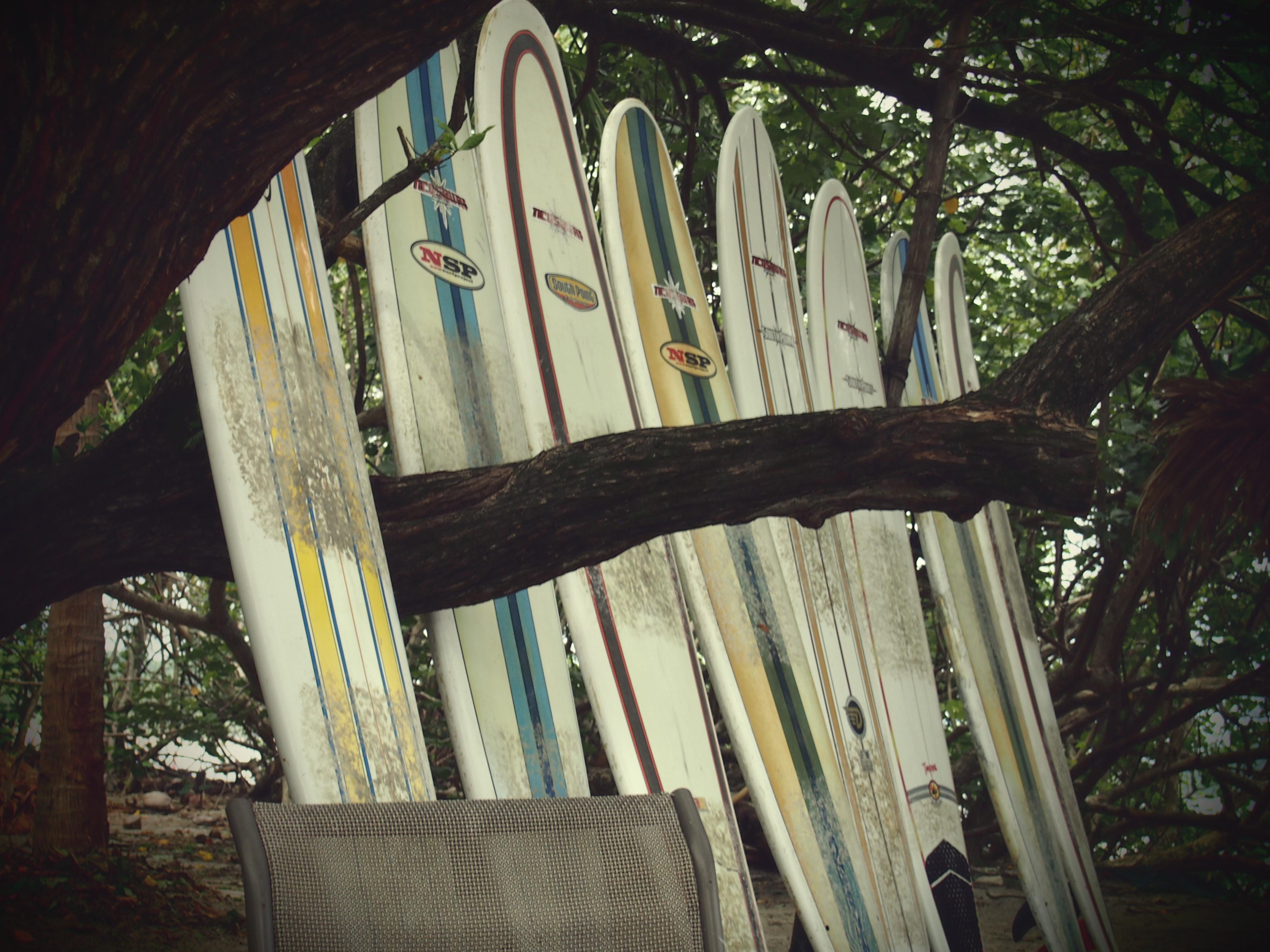 Ticos surf school