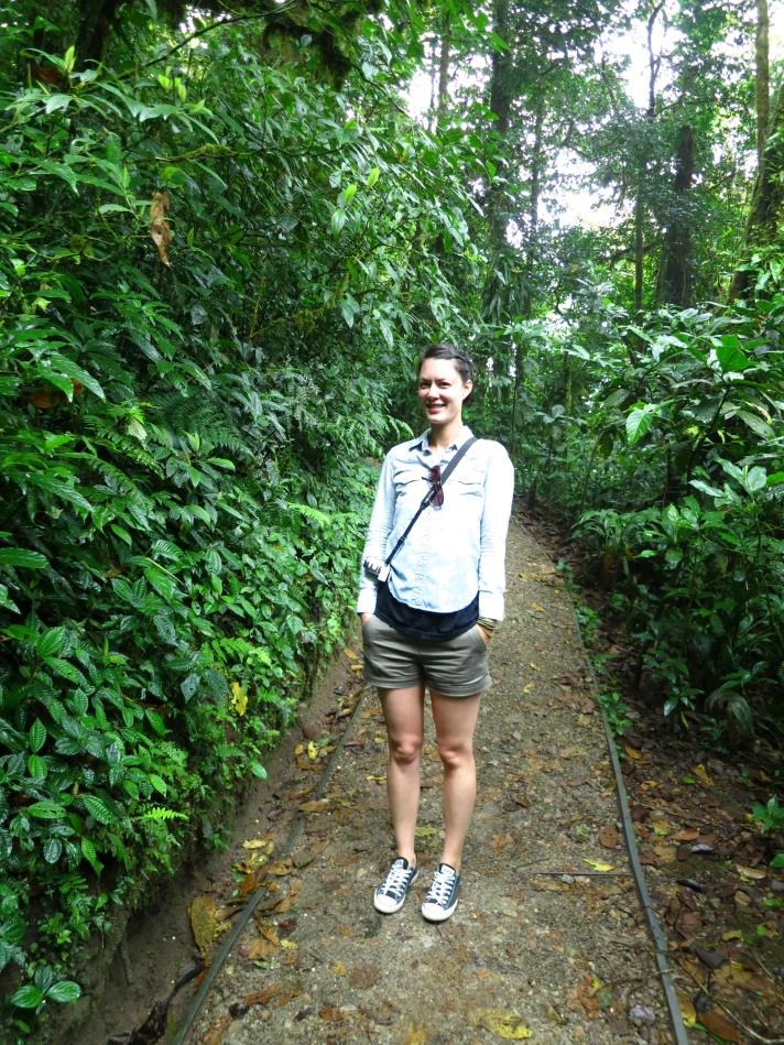 Monte Verde Reserve