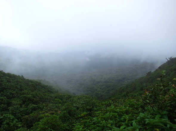 Monte Verde Cloud Forest